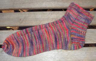 Sequoia_sock_1_flat_july_2007_0001