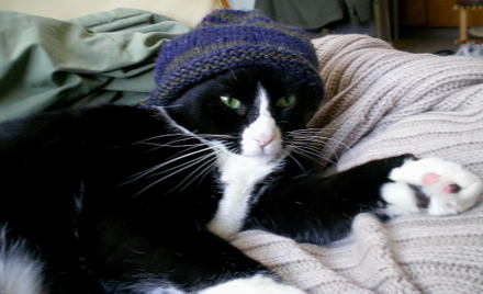 Mamoko_in_baby_hat2_march_2008_0001