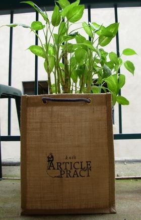 Article_pract_bag_0001_1