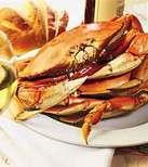 Crab03